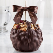 Dark Chocolate Cranberry Walnut