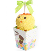 Spring Chick Gift Pack